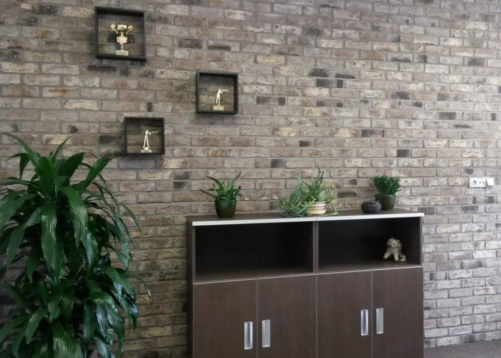 Interiér kanceláře z obkladových pásků Vecto